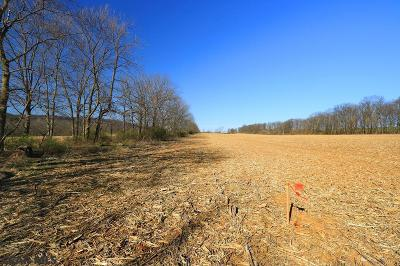 Residential Lots & Land For Sale: 224-Lot Rimmey Road