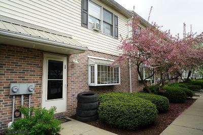 State College Condo/Townhouse For Sale: 621 Marjorie Mae Street