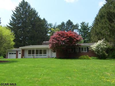 State College Single Family Home For Sale: 134 Harris Drive