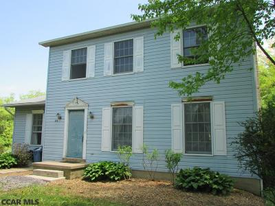 Centre County Single Family Home For Sale: 235 Lutz Lane