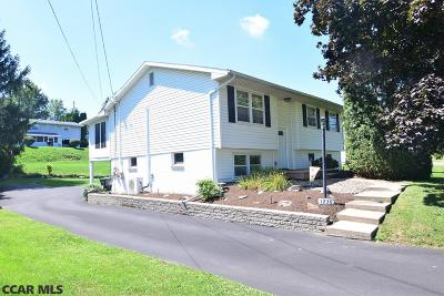 Bellefonte Single Family Home For Sale: 1236 Zion Road