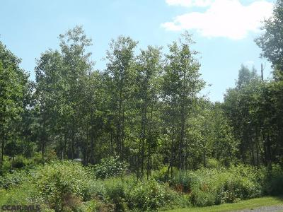 Residential Lots & Land For Sale: 91 Crago Lane