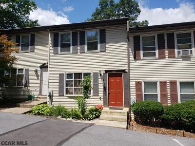 State College Condo/Townhouse For Sale: 243 Oakwood Avenue