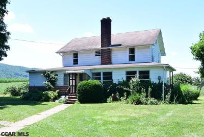 Bellefonte Single Family Home For Sale: 1660 Nittany Valley Drive