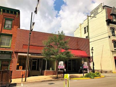 Centre County Commercial For Sale: 123 Allegheny Street S