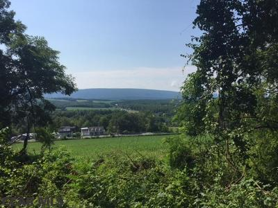 Residential Lots & Land For Sale: S Route 522