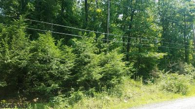 Residential Lots & Land For Sale: Lot 35 Bald Eagle Forest Road