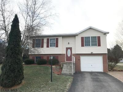 Bellefonte Single Family Home For Sale: 117 Meadow Lane