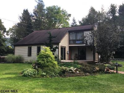 Centre County Single Family Home For Sale: 125 Jeter Lane