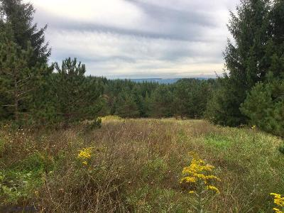 Residential Lots & Land For Sale: On Hollow Road