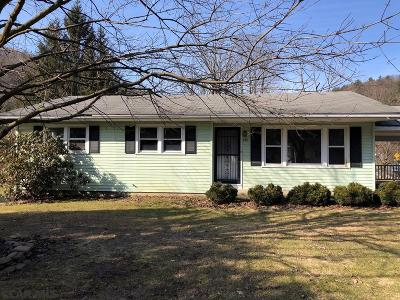 Bellefonte Single Family Home For Sale: 980 Runville Road