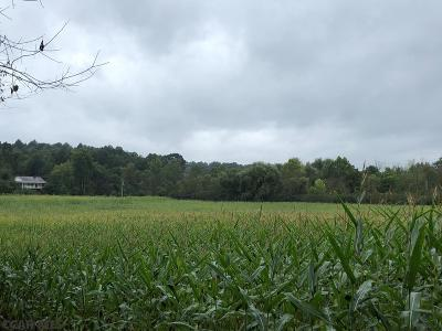Residential Lots & Land For Sale: On Ferguson Valley Road