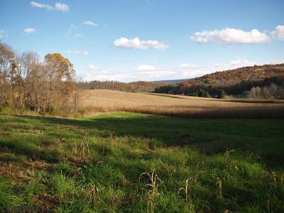 Residential Lots & Land For Sale: 800 Loveville Road