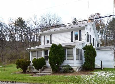 Centre County Single Family Home For Sale: 1307 Penns Creek Road
