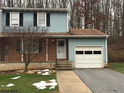 State College Condo/Townhouse For Sale: 283 Oakwood Avenue
