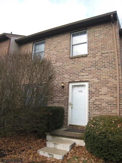 State College Condo/Townhouse For Sale: 1103 Teaberry Lane