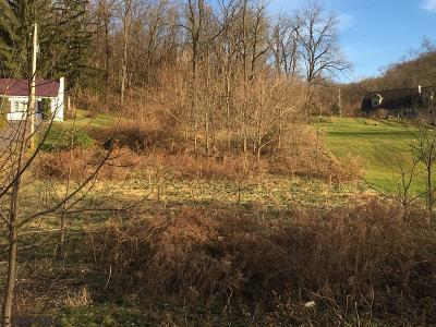 Residential Lots & Land For Sale: Lot On Route 103 N