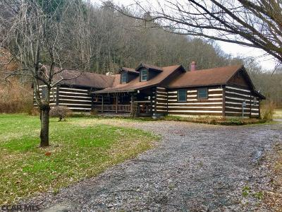 Centre County Single Family Home For Sale: 1336 Eagle Valley Road S