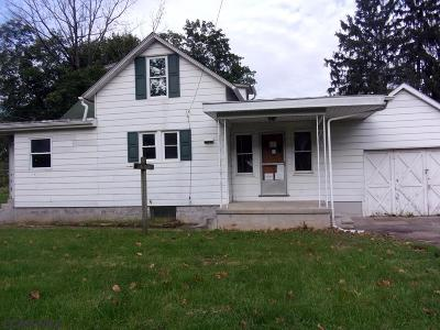 Reedsville Single Family Home For Sale: 203 Logan Street E