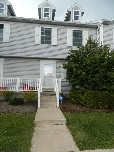 State College Condo/Townhouse For Sale: 129 Birchtree Court
