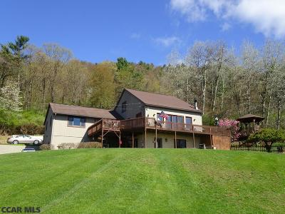 Bellefonte Single Family Home For Sale: 1703 Valley View Road