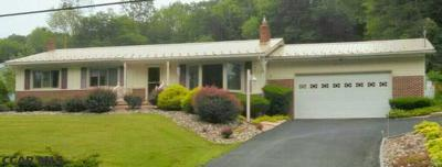 Bellefonte Single Family Home For Sale: 411 Curtin Narrows Road