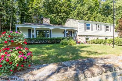 State College Single Family Home For Sale: 167 Lower Grandview Road