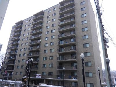 State College Condo/Townhouse For Sale: 255 Beaver Avenue E #802