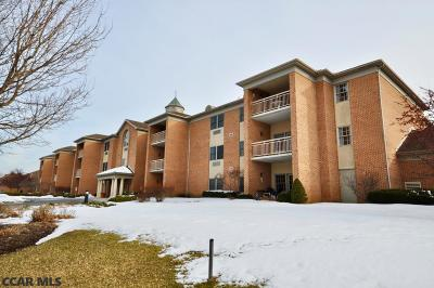 Centre County Condo/Townhouse For Sale: 305 Village Heights Drive #223