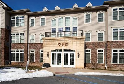 State College Condo/Townhouse For Sale: 100 Jefferson Avenue #135