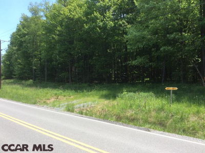 Residential Lots & Land For Sale: Lot 3 Spruce Road