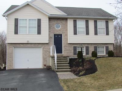 Centre County Single Family Home For Sale: 210 Steeplechase Drive