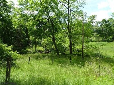 State College Residential Lots & Land For Sale: Lot #4 Branch Road E
