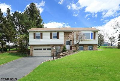 State College Single Family Home For Sale: 1061 Cortland Drive
