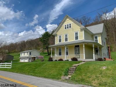 Bellefonte Single Family Home For Sale: 495 Valley View Road
