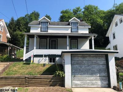 Tyrone Single Family Home For Sale: 219 Ironville Road