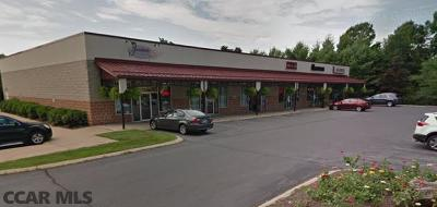 Centre County Commercial For Sale: 355 Colonnade Way #B &