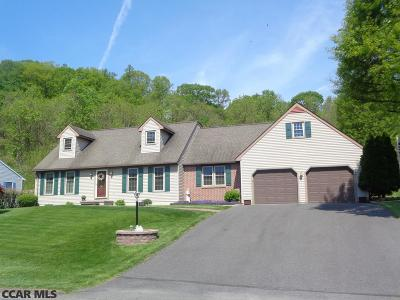 Mifflin County Single Family Home For Sale: 269 Cornfield Circle