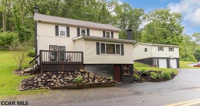 Bellefonte Single Family Home For Sale: 311 Lyonstown Road