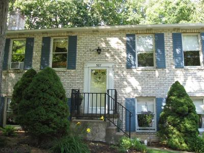 State College Single Family Home For Sale: 587 Melissa Lane