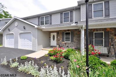 State College Single Family Home For Sale: 745 Galen Drive