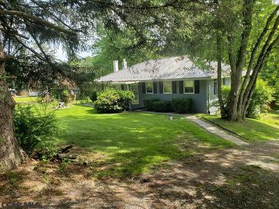 Centre County Single Family Home For Sale: 454 Bullit Run Road