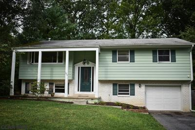 State College Single Family Home For Sale: 262 Douglas Drive