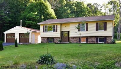 Single Family Home For Sale: 1425 Steele Hollow Road