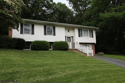 State College Single Family Home For Sale: 619 Old Farm Lane