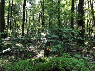 Residential Lots & Land For Sale: 1927 Rag Valley Road #Lot 3