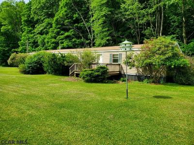 Bellefonte Single Family Home For Sale: 101 Fye Road