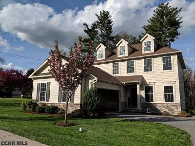 State College Single Family Home For Sale: 396 Havershire Boulevard
