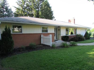 Single Family Home For Sale: 213 Butternut Street E