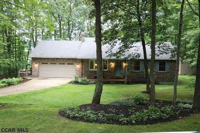 Centre County Single Family Home For Sale: 157 Doe Drive